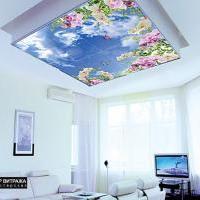 Фотовитражный потолок